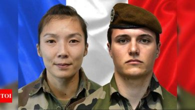 Two French soldiers killed during mission in Mali - Times of India