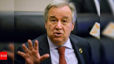 UN chief hopes tensions along India-China border could be dialled down through dialogue | India News - Times of India