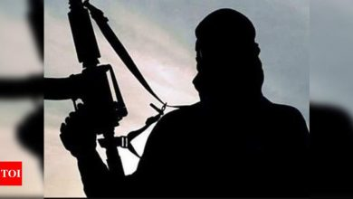 US re-designates LJ, LeT as foreign terrorist outfits - Times of India