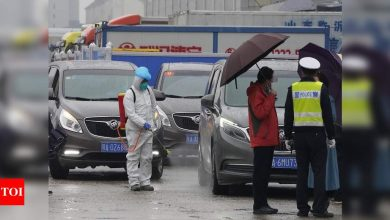 WHO teams visits Wuhan food market in search of virus clues - Times of India