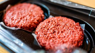 What is vegetarian meat and how is it made?    The Times of India