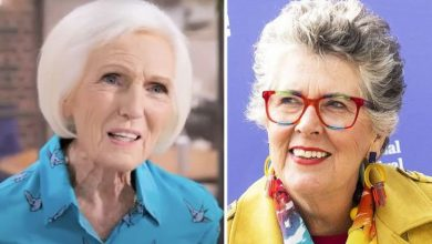 Mary Berry adored by Bake Off fans after 'Prue Leith sparked Brexit fury'