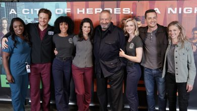 "'Chicago Fire', 'Chicago Med' and 'Chicago P.D.' To Host Virtual ""One Chicago Day"" Fan Event"