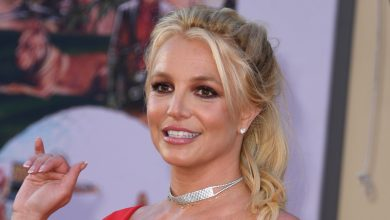 Britney Spears' Father Loses Bid to Retain Control of Delegating Her Investments