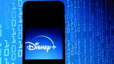 Disney+ Has 95M Subscribers, But a Heavy Shoe Is Waiting to Drop