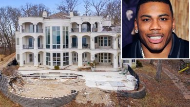 Nelly finds buyer for abandoned house days after listing it