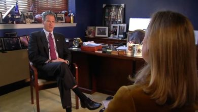 In First TV Interview Since Return to US, Scott Brown Says Politics 'Kind of Disgusts Me Now'