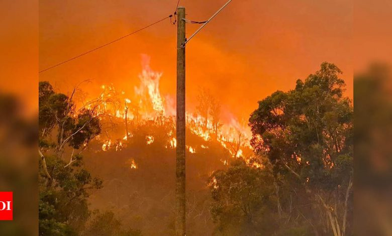 30 homes estimated to have been lost in Australian wildfire - Times of India