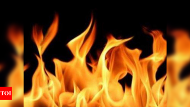 6 killed in east China gold mine fire - Times of India