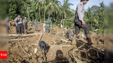 At least 5 people killed, 70 missing as landslides hit gold mine in Indonesia - Times of India
