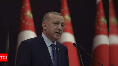 Celebrated Turkish actor risks jail for Erdogan 'insult' - Times of India
