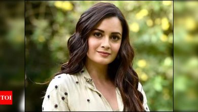 Dia Mirza to tie the knot with Mumbai-based businessman Vaibhav Rekhi on February 15? - Times of India