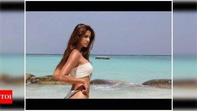 Disha Patani gets nostalgic about her beach vacay; shares a stunning throwback photo in a swimsuit - Times of India