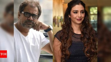 Exclusive interview! Anees Bazmee: Why blame Tabu for delay in 'Bhool Bhulaiyaa 2' shoot? We are resuming soon - Times of India