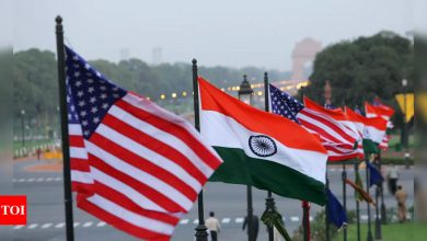 Indian-Americans are more liberal towards issues in US, conservative in India: Survey - Times of India