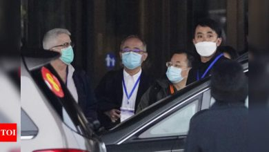 Japanese WHO expert voices skepticism on China's theory 'virus intruded' into Beijing from abroad - Times of India