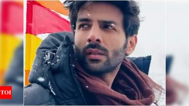 Kartik Aaryan is having all the fun in snow vibing and creating his 'Game Of Thrones' moment - Times of India
