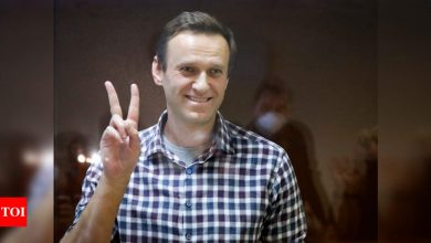 Kremlin critic Alexei Navalny back in court for jail appeal, possible fine - Times of India