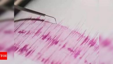 Magnitude 6.3 earthquake strikes southern Philippines - Times of India