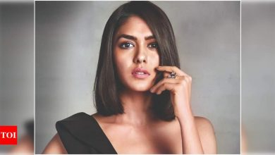 Mrunal Thakur: I don't want to settle for something less challenging - Times of India