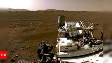 Nasa releases Mars landing video: 'Stuff of our dreams' - Times of India