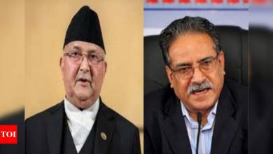 Nepal ruling party on verge of formal split - Times of India