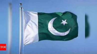 No possibility of Pakistan being blacklisted by FATF, says minister - Times of India