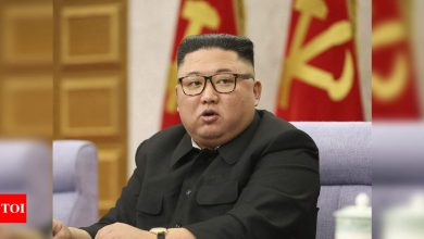 North Korea 'tried to hack' Pfizer for vaccine info: Reports - Times of India
