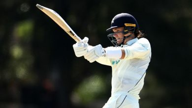 Peter Handscomb's century guides Victoria to safety