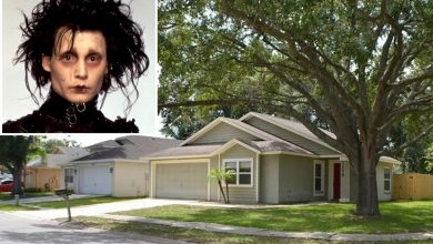 See the real Florida neighborhood where 'Edward Scissorhands' was filmed