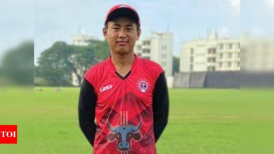 Self-taught teenage spin sensation eyes IPL riches; says learnt by watching Warne videos | Cricket News - Times of India