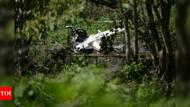 Six Mexican military personnel killed in air crash - Times of India