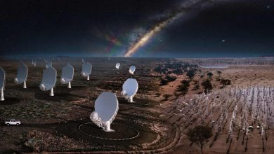 Square Kilometer Array Observatory launched in South Africa will take a decade to complete