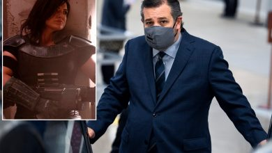 Ted Cruz tweets Disney bowed to cancel culture for Gina Carano firing