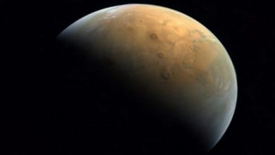 UAE's 'Hope' probe sends home its first picture of Mars after successfully entering Red Planet's orbit