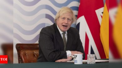 UK's Johnson to plot path out of lockdown on Monday - Times of India