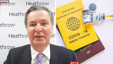 Vaccine passports: Travel 'very complicated' says Heathrow boss in call for 'simpler' app