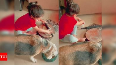 Watch: Soha Ali Khan shares a glimpse of Inaaya making rotis with her furry friend - Times of India