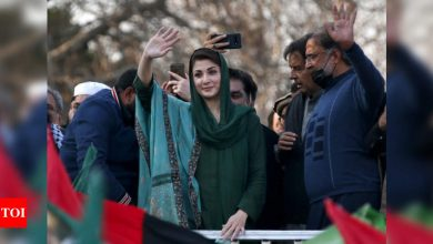 Will live in Pakistan, won't go abroad, says Maryam Nawaz - Times of India