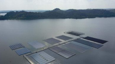 Space-starved Singapore builds huge floating solar farms in push for renewable power- Technology News, Firstpost