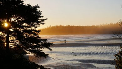 Pandemic rules most travel out, but Canada's beaches worth a look