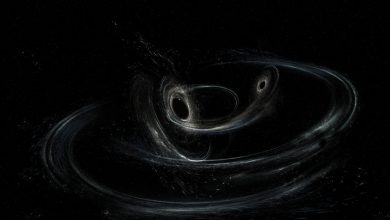Cooling 'primordial soup' in early universe produced gravitational waves, claims new study- Technology News, Firstpost