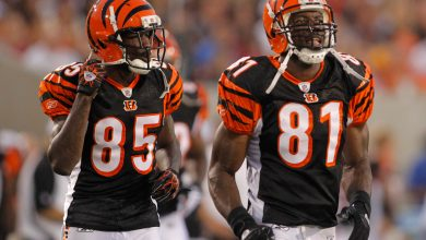 Terrell Owens on Chad Johnson: 'No one is perfect'