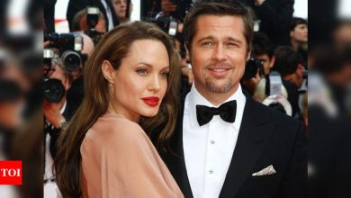 Angelina Jolie files 'proof' of domestic abuse claim against ex-husband Brad Pitt - Times of India ►
