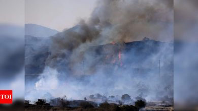 California wildfire sparked when tree hit power line: Report - Times of India