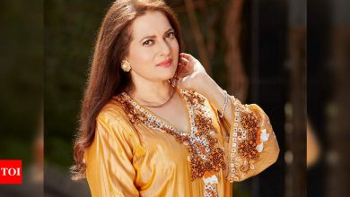 Exclusive interview! Vijayta Pandit: I am going to make a comeback and you will soon hear an announcement - Times of India