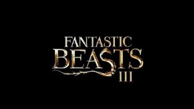 Warner Bros To End Fantastic Beasts Franchise With Third Part?