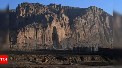 Gap in history: Afghans recall Taliban's destruction of famed Buddha statues - Times of India