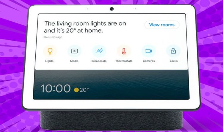 Google Home just added 3 new designs to your Nest Hub and it