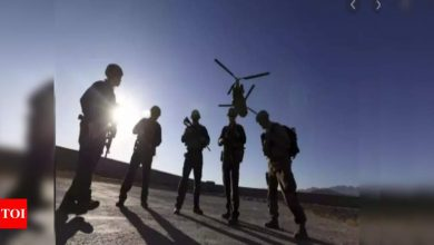 Helicopter crash kills 9 Afghan troops in central province - Times of India